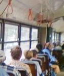 in tramvai