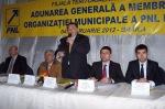 imagine de la Conf alegeri municipale PNL Braila 2012