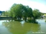 Dunarea 1