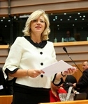 Plenary session in Brussels - week 46 2014