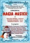 afis Magia muzicii