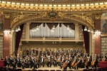 orchestra_2014