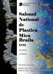 afis Salon plastica mica 2016