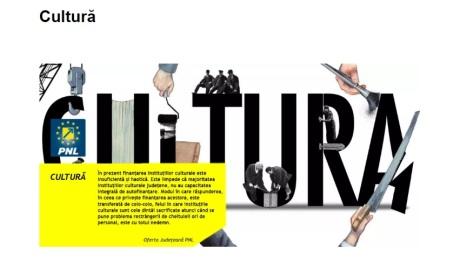 din program Cirligea, cultura