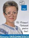 Simona Draghinescu, afis electoral