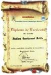 Diploma de Excelenta pentru Muzica Militara Braila